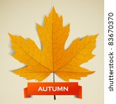 Maple Leave With Autumn Banner