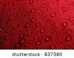 Rose Petal Droplets   Macro Of...