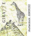 tall giraffe and head of...   Shutterstock . vector #83859232