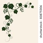 beautiful grape vine green...