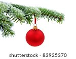 Christmas Evergreen Spruce Tree ...