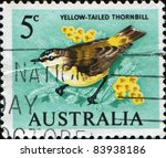 Small photo of AUSTRALIA - CIRCA 1964: A Stamp printed in Australia shows Yellow-tailed Thornbill or Yellow-rumped Thornbill (Acanthiza chrysorrhoa), circa 1964