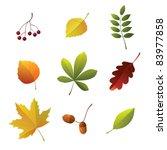 set of autumn details | Shutterstock .eps vector #83977858