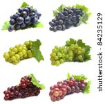 grape fruit | Shutterstock . vector #84235129