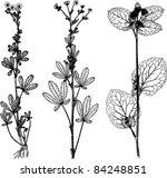 plants | Shutterstock .eps vector #84248851