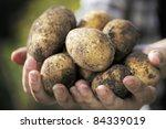 farmer holding harvested dirty...   Shutterstock . vector #84339019