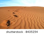 footprints on golden sands | Shutterstock . vector #8435254