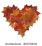 Fall leaves lot in heart shape isolated  over white - stock photo