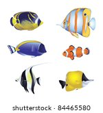 colorful tropical fish isolated ... | Shutterstock .eps vector #84465580