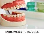 Dental jaw - stock photo