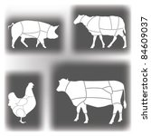 domestic animal meat diagrams | Shutterstock .eps vector #84609037