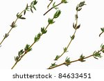 a close overhead view of thyme... | Shutterstock . vector #84633451