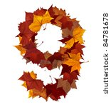 Number 9 made with autumn leaves. Isolated on white with clipping paths. Find others characters in our portfolio to compose your own words. - stock photo