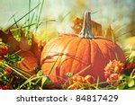 Small Pumpkin In The Grass Wit...