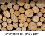 Tree Stumps For Background Use