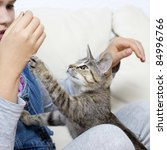 Stock photo a girl is playing with a kitten 84996766
