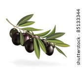 illustration of olive branch | Shutterstock .eps vector #85133344