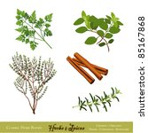 herbs and spices. classic... | Shutterstock .eps vector #85167868