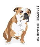 Vector From An English Bulldog...