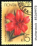 Small photo of USSR - CIRCA 1989: A stamp printed in USSR shows image of a Eclat du Sair from the series Lilys, circa 1989