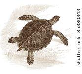 Turtle   Vintage Engraved...