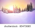 Vivid Winter Landscape