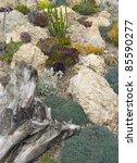 rock garden | Shutterstock . vector #85590277
