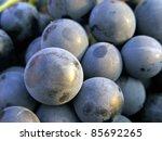 Grapes. Selective Focus.