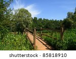 Wooden Bridge Over River In...