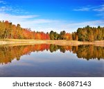 An Autumn Colorful Forest By...