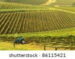 views of vineyards hunter...   Shutterstock . vector #86115421