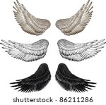 Eagle Wings   Vector Drawing