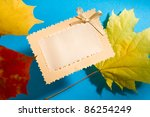 leaves and card isolated on the ... | Shutterstock . vector #86254249