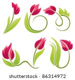 vector collection of spring...
