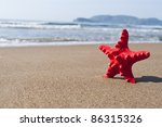Red star shell in tropical sand beach - stock photo