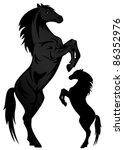 Black Stallion Vector...