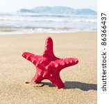 Red starfish on sunny tropical beach - stock photo