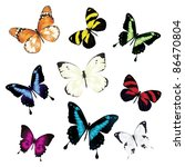 Stock vector various vector butterflies on white background 86470804