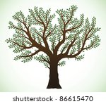 Detailed illustration of a tree with green leaves - stock vector