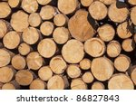 Cut Tree Stumps Background Or...