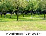 forest | Shutterstock . vector #86939164