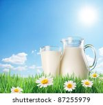 Milk Jug And Glass On The Gras...