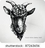 black goat hand drawn. vector...