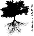 Silhouettes Of Tree With Its...