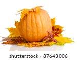 ripe pumpkin and autumn leaves... | Shutterstock . vector #87643006