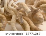 detail of some light brown serpulid worm tubes in light back - stock photo
