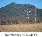 late autumn in oze | Shutterstock . vector #87783154