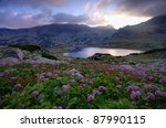 Lake On Mountain And Flowers ...