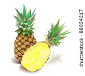realistic illustration of ripe... | Shutterstock .eps vector #88034317
