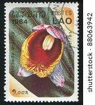 Small photo of LAOS - CIRCA 1984: stamp printed by Laos, shows Alpinia speciosa, circa 1984.